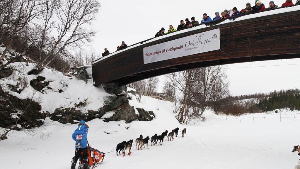 STILIG BRU: Til helga blir det masse dyr og folk på Orkelbogen, som er et av sjekkpunktene under Femundløpet. Foto: privat.