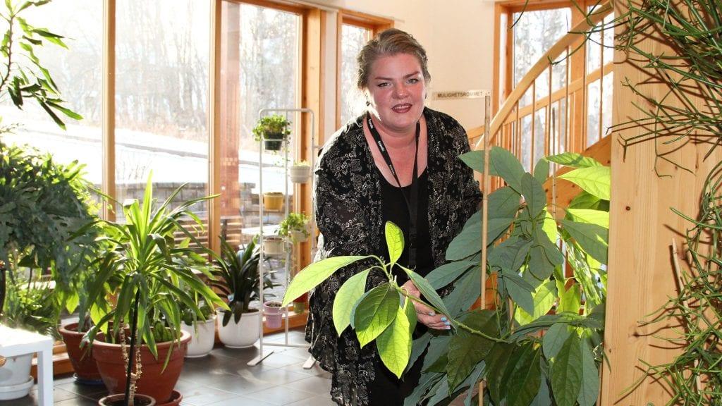 HOBBYGARTNER: Jurga Obolenaite har skapt et frodig planteliv i Kompetansesenteret. her med en sjøldyrket avocadoplante. Foto: Anne Skjøtskift